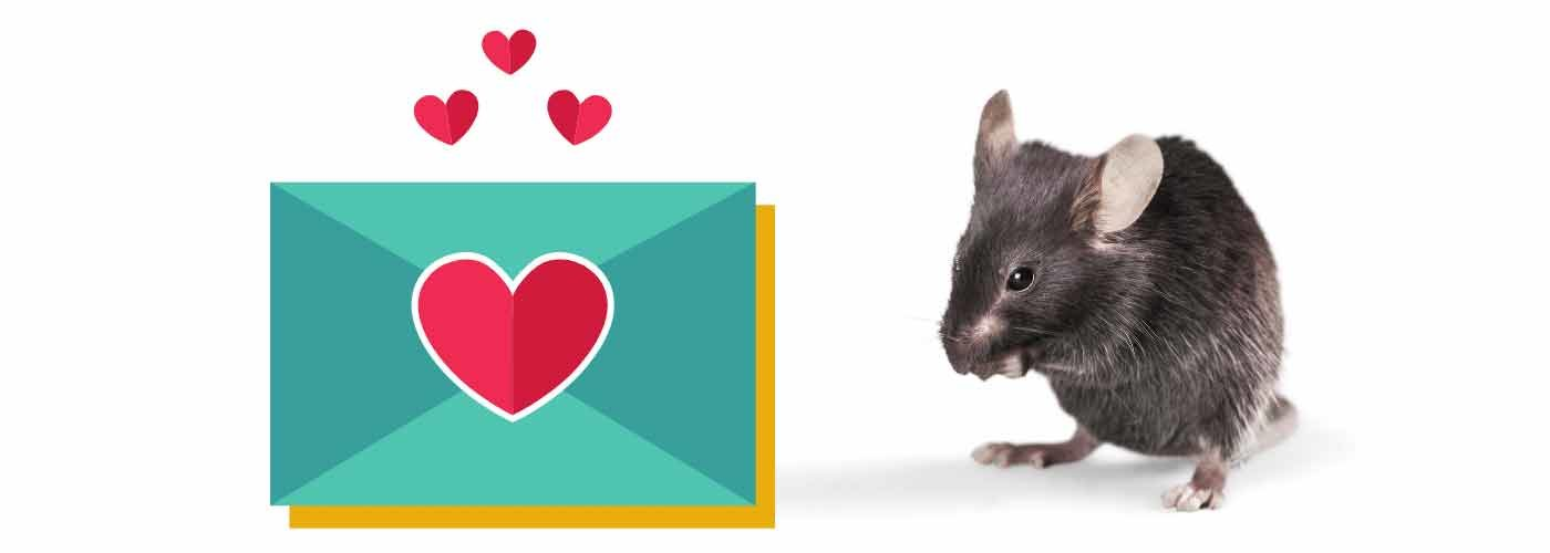 carta Ratón Pérez