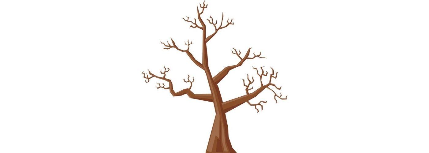 cuento del árbol que no tenía hojas